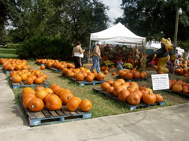 pumpkins at celebration florida - Halloween In Orlando Fl